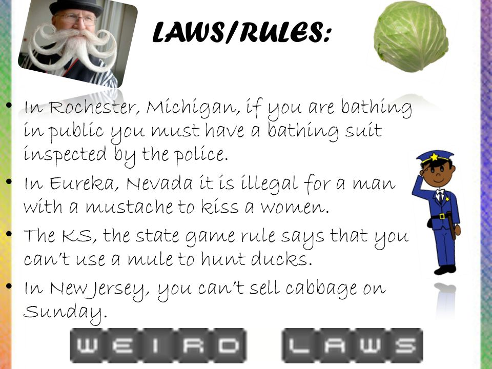 LAWS/RULES: In Rochester, Michigan, if you are bathing in public you must have a bathing suit inspected by the police.