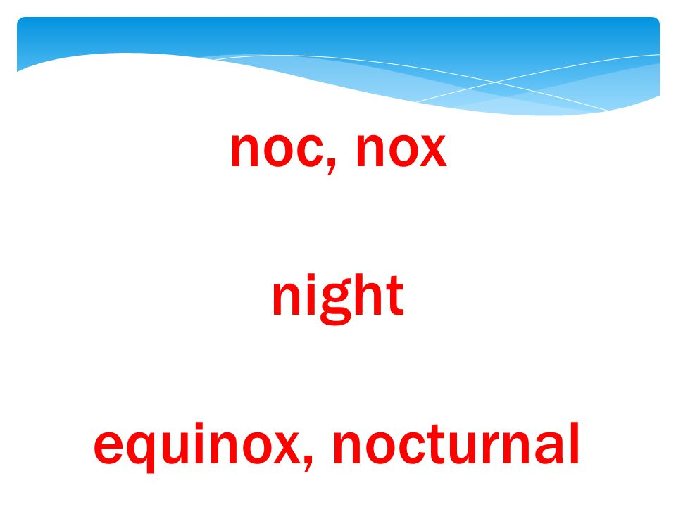 noc, nox night equinox, nocturnal