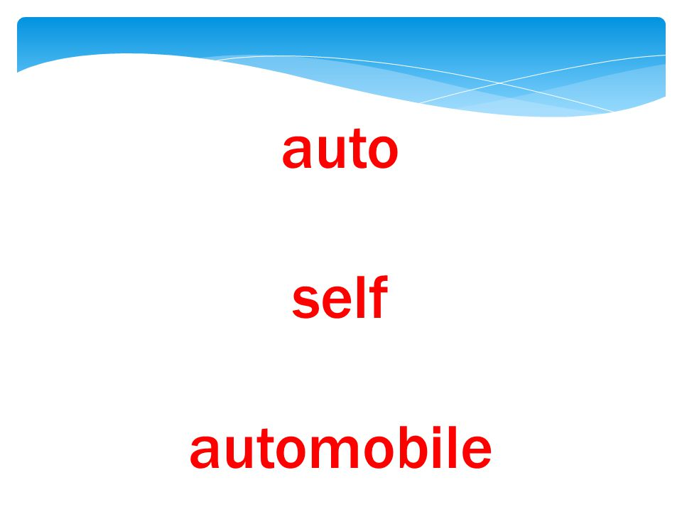 auto self automobile