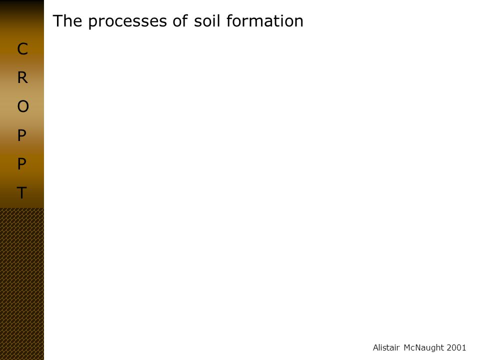 The processes of soil formation CROPPTCROPPT Alistair McNaught 2001 The processes of soil formation can most easily be seen where a soil is known to have been built up by gradual deposition.