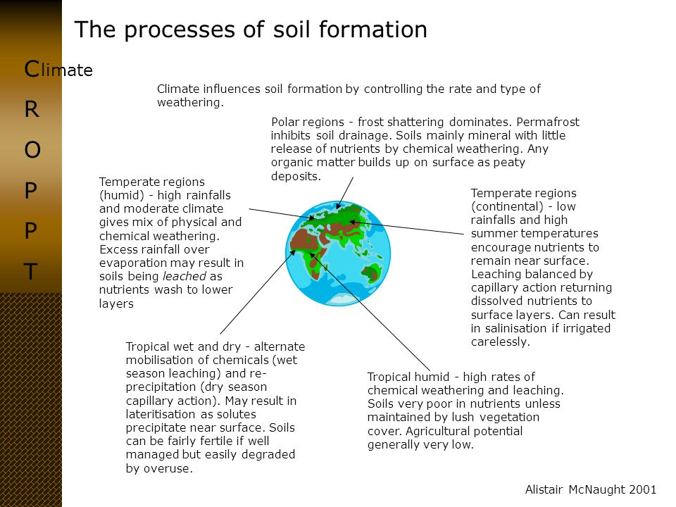 The processes of soil formation CROPPTCROPPT Alistair McNaught 2001 elief North South Sunny Shady Thick soil Thin soil Relief influences the thickness of the soil (steep slopes wash away soil more rapidly) and the processes at work.
