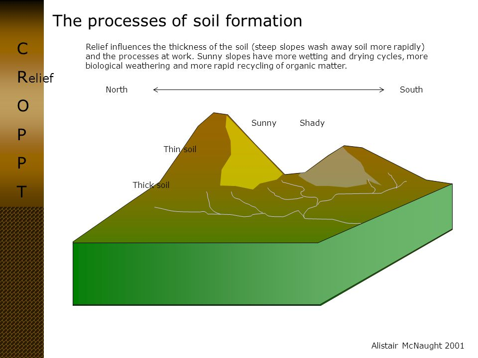 The processes of soil formation CROPPTCROPPT Alistair McNaught 2001 elief North South Sunny Shady Thick soil Thin soil Relief influences the thickness
