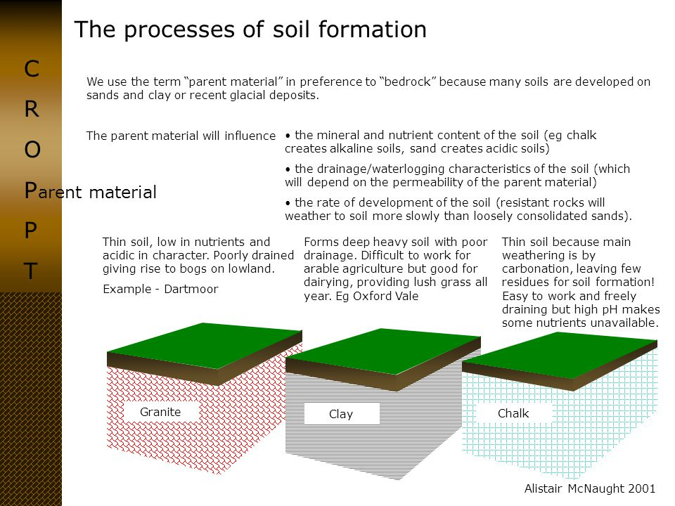 """The processes of soil formation CROPPTCROPPT Alistair McNaught 2001 arent material We use the term """"parent material"""" in preference to """"bedrock"""" becaus"""
