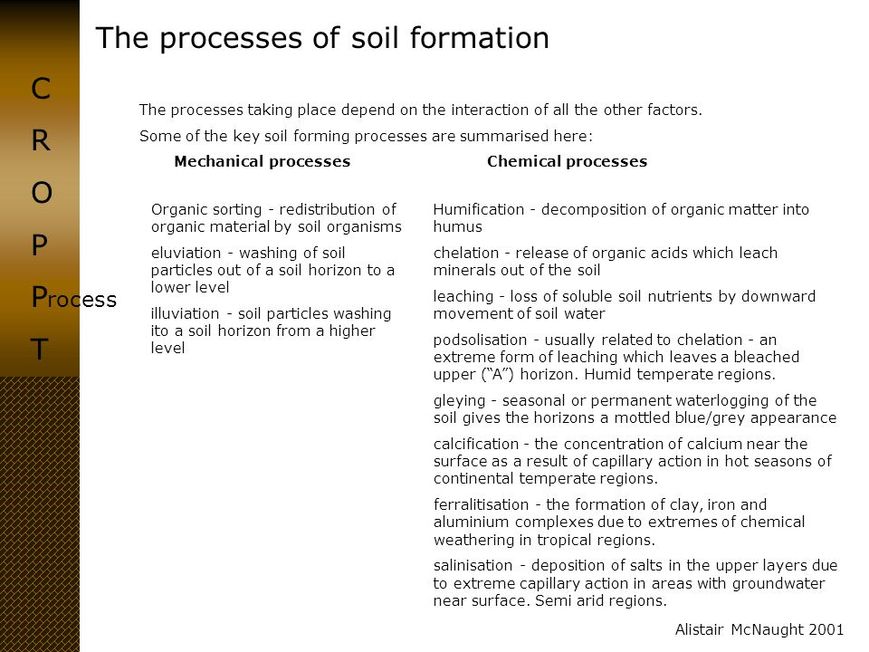 The processes of soil formation CROPPTCROPPT Alistair McNaught 2001 ime Soils are a dynamic matrix with living and non-living components.