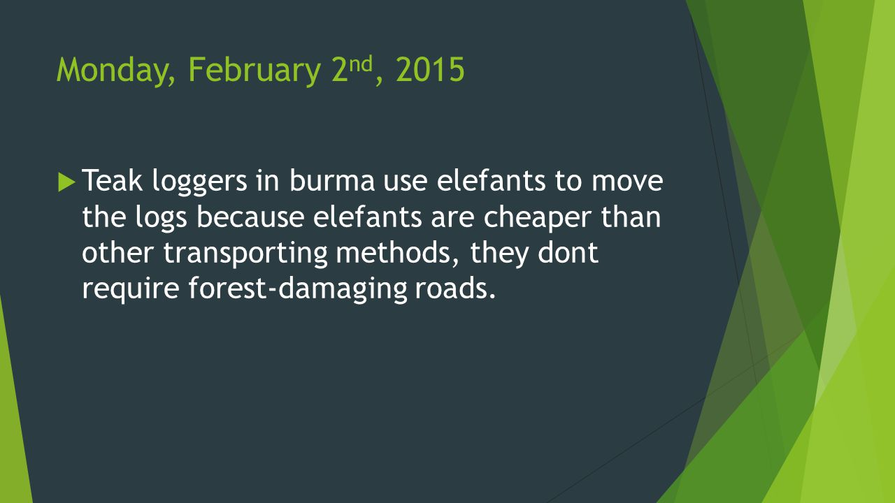 Monday, February 2 nd, 2015  Teak loggers in burma use elefants to move the logs because elefants are cheaper than other transporting methods, they dont require forest-damaging roads.