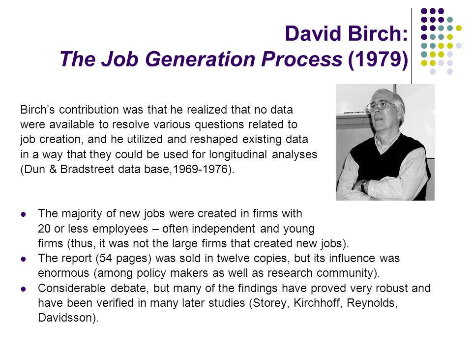 David Birch: The Job Generation Process (1979) Birch's contribution was that he realized that no data were available to resolve various questions rela