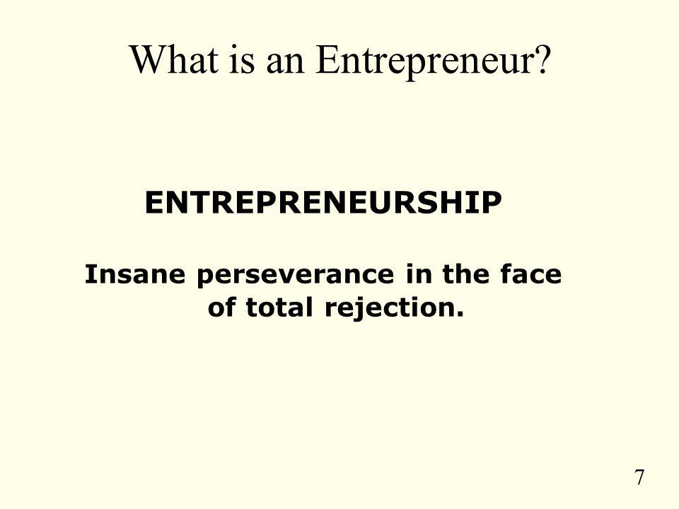 8 What Is An Entrepreneur.