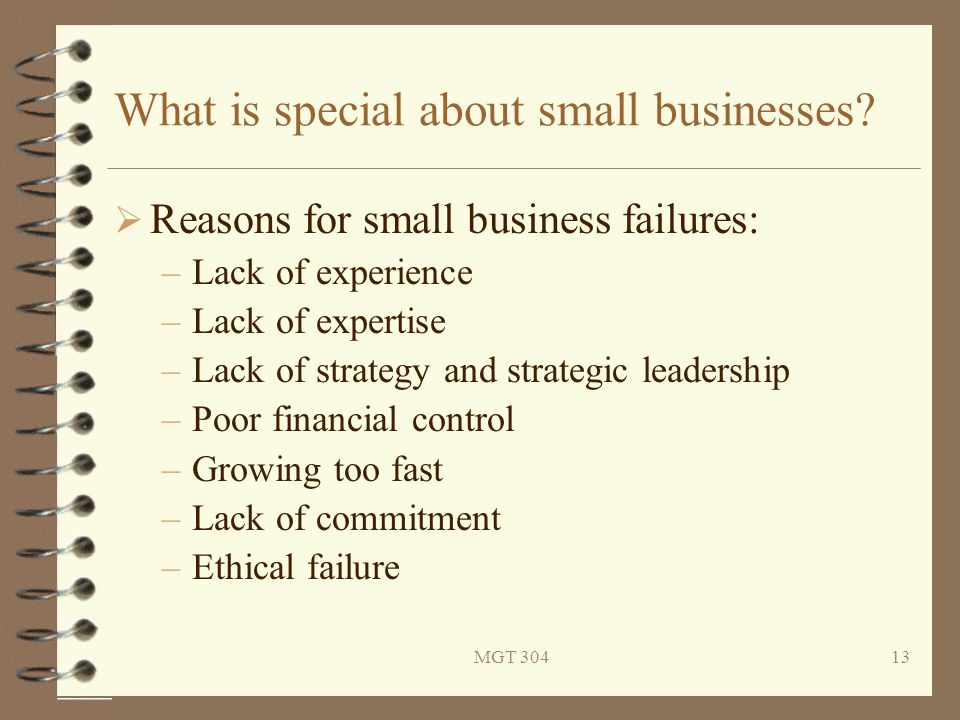 MGT 30413 What is special about small businesses?  Reasons for small business failures: –Lack of experience –Lack of expertise –Lack of strategy and