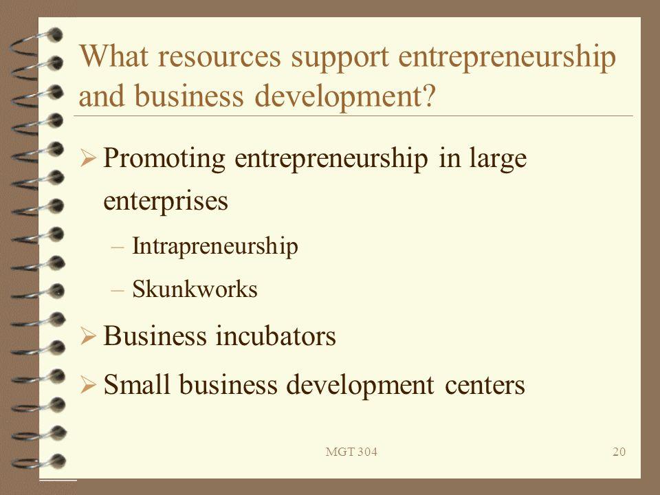 MGT 30420 What resources support entrepreneurship and business development?  Promoting entrepreneurship in large enterprises –Intrapreneurship –Skunk
