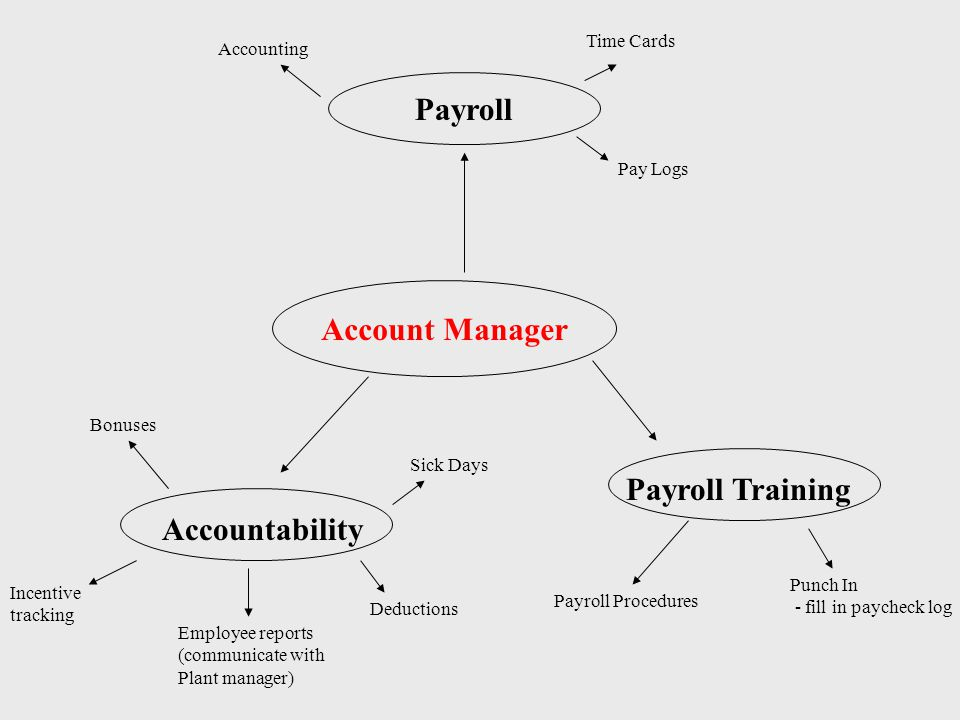 Account Manager Payroll Accountability Bonuses Incentive tracking Deductions Accounting Pay Logs Time Cards Payroll Training Payroll Procedures Sick Days Employee reports (communicate with Plant manager) Punch In - fill in paycheck log