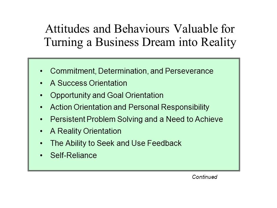 Attitudes and Behaviours Valuable for Turning a Business Dream into Reality Commitment, Determination, and Perseverance A Success Orientation Opportun