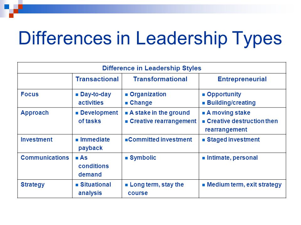 Differences in Leadership Types Difference in Leadership Styles TransactionalTransformationalEntrepreneurial Focus Day-to-day activities Organization Change Opportunity Building/creating Approach Development of tasks A stake in the ground Creative rearrangement A moving stake Creative destruction then rearrangement Investment Immediate payback Committed investment Staged investment Communications As conditions demand Symbolic Intimate, personal Strategy Situational analysis Long term, stay the course Medium term, exit strategy