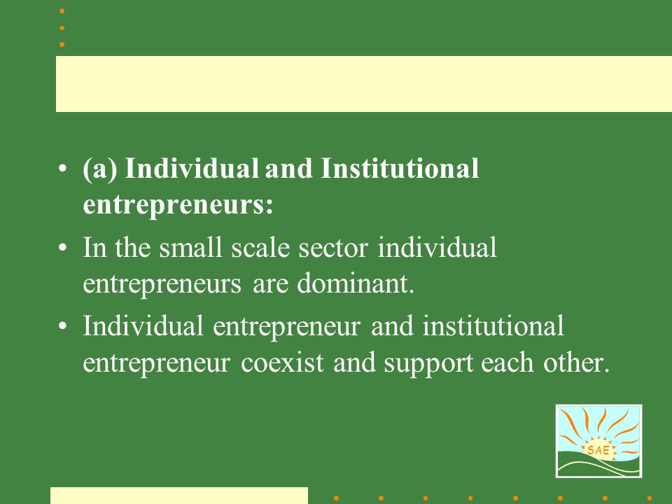 SAE (a) Individual and Institutional entrepreneurs: In the small scale sector individual entrepreneurs are dominant. Individual entrepreneur and insti