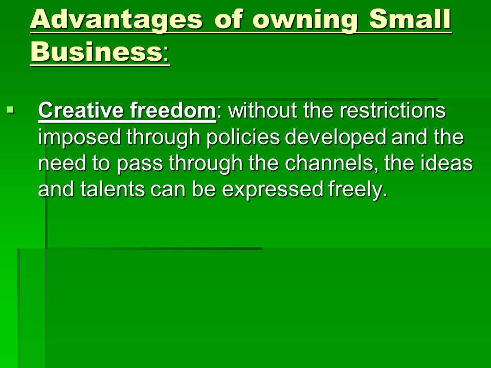 Advantages of owning Small Business:  Creative freedom: without the restrictions imposed through policies developed and the need to pass through the channels, the ideas and talents can be expressed freely.