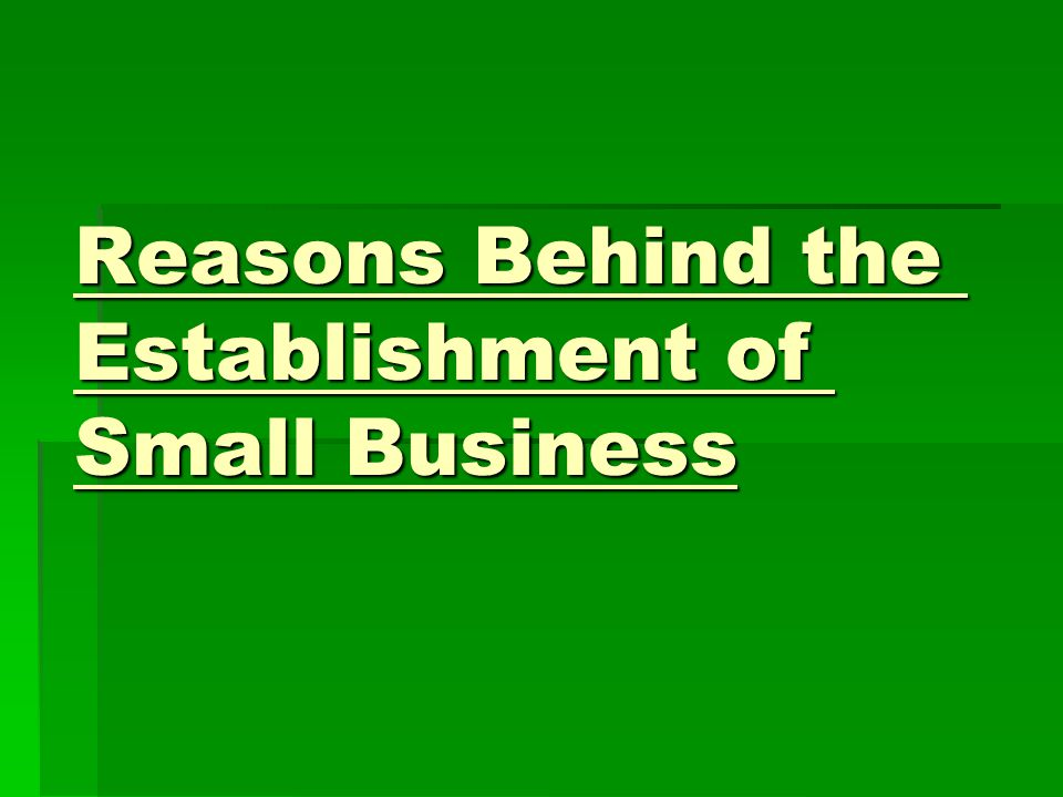 Reasons Behind the Establishment of Small Business