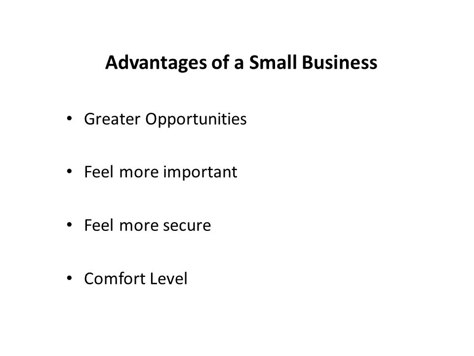 Advantages of a Small Business Greater Opportunities Feel more important Feel more secure Comfort Level