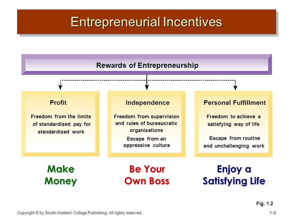 Copyright © by South-Western College Publishing. All rights reserved. 1–81–8 Fig. 1.2 Entrepreneurial Incentives Make Money Be Your Own Boss Enjoy a S