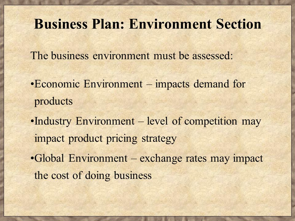 Business Plan: Environment Section The business environment must be assessed: Economic Environment – impacts demand for products Industry Environment – level of competition may impact product pricing strategy Global Environment – exchange rates may impact the cost of doing business