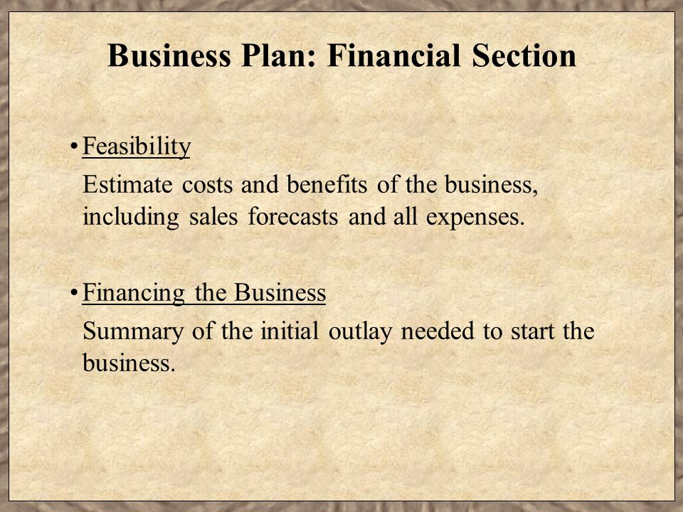 Business Plan: Financial Section Feasibility Estimate costs and benefits of the business, including sales forecasts and all expenses.