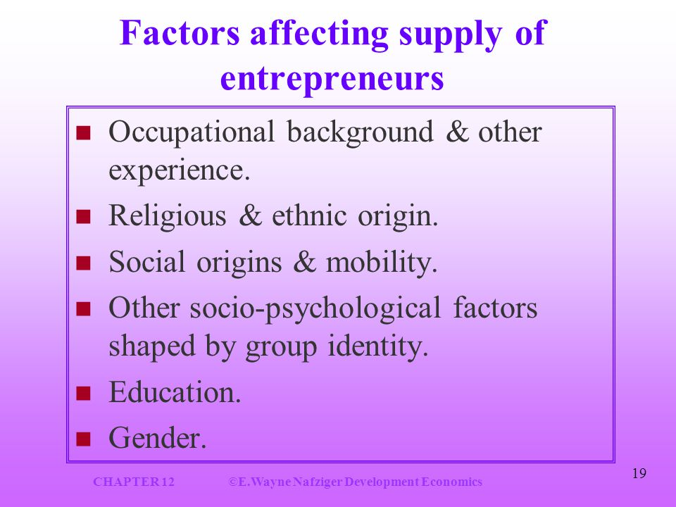 CHAPTER 12©E.Wayne Nafziger Development Economics 19 Factors affecting supply of entrepreneurs Occupational background & other experience.
