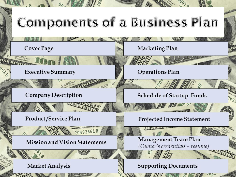 Cover Page Executive Summary Company Description Product /Service Plan Mission and Vision Statements Market Analysis Marketing Plan Operations Plan Schedule of Startup Funds Management Team Plan (Owner's credentials – resume) Projected Income Statement Supporting Documents
