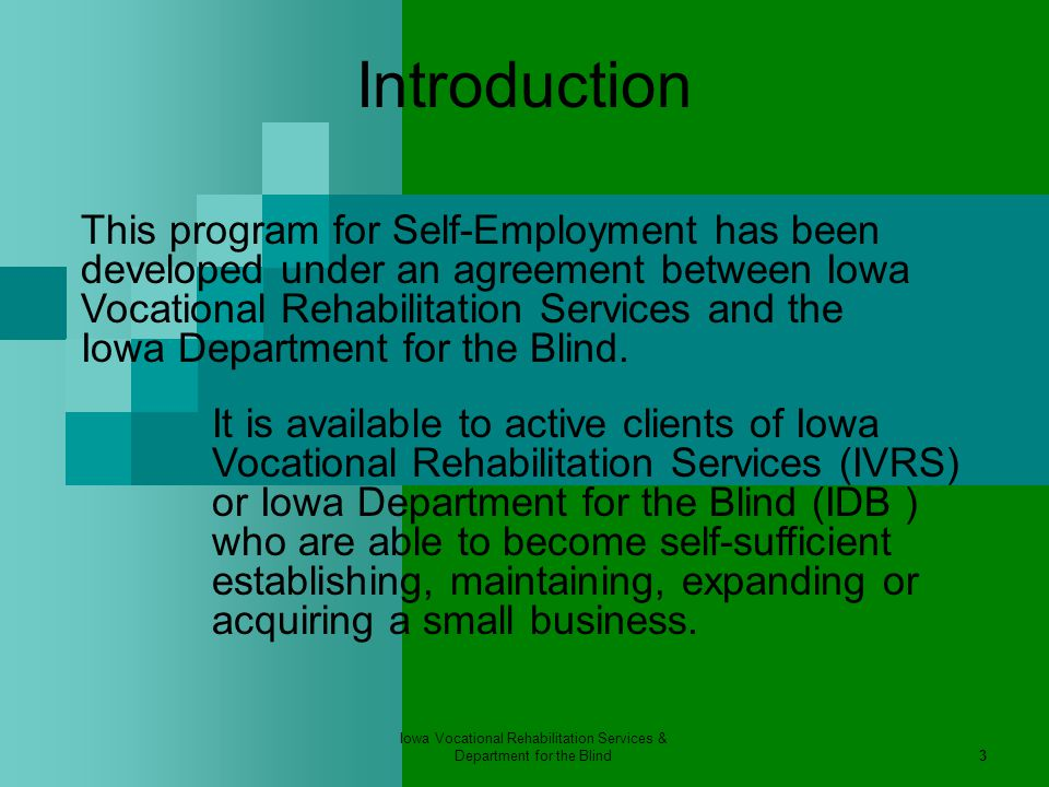 Iowa Vocational Rehabilitation Services & Department for the Blind24 Part 2 – The Right Business Idea The idea must make:  Personal sense  Business sense  Market sense  Financial sense Overall, the idea must make money to achieve self-sufficiency!