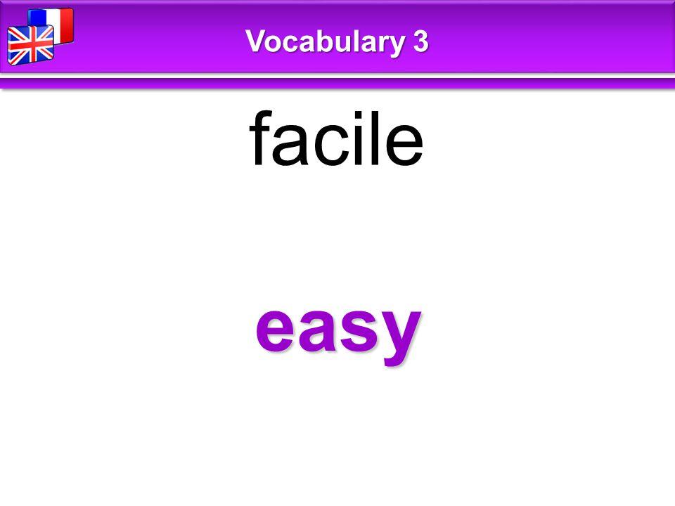 easy facile Vocabulary 3