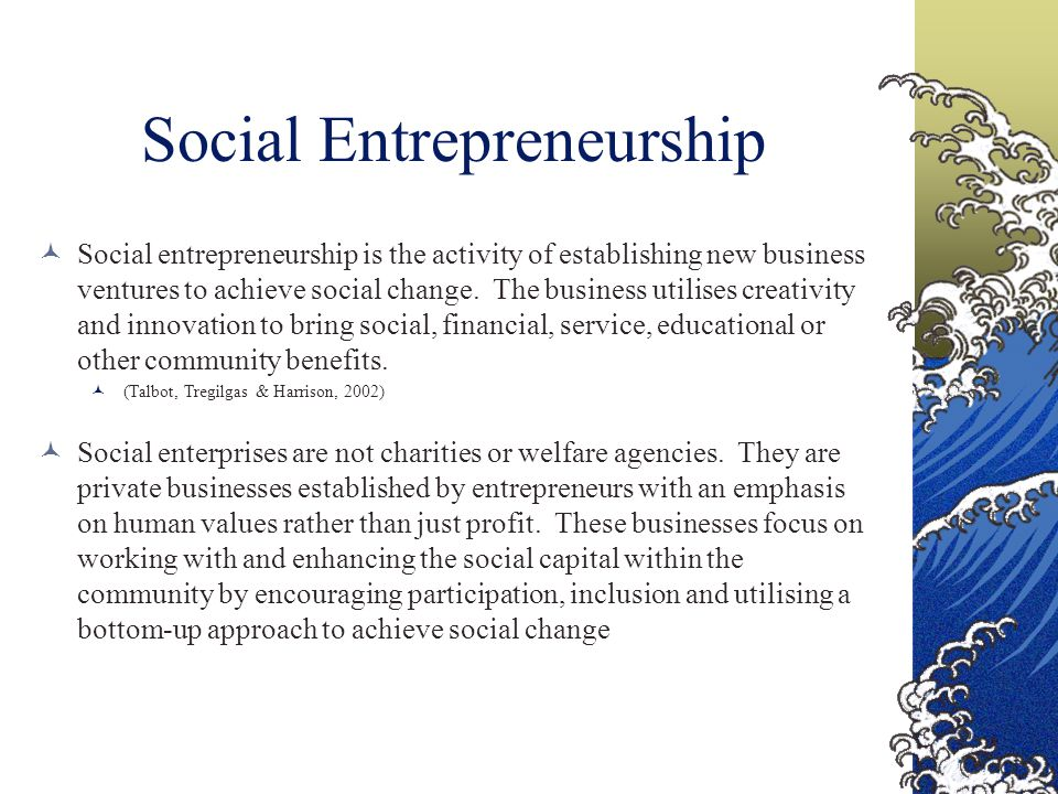 Social Entrepreneurship Social entrepreneurship is the activity of establishing new business ventures to achieve social change.