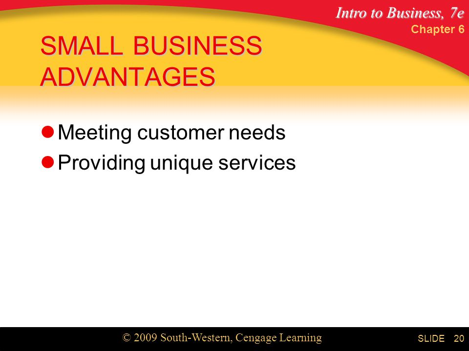 Intro to Business, 7e © 2009 South-Western, Cengage Learning SLIDE Chapter 6 20 SMALL BUSINESS ADVANTAGES Meeting customer needs Providing unique services