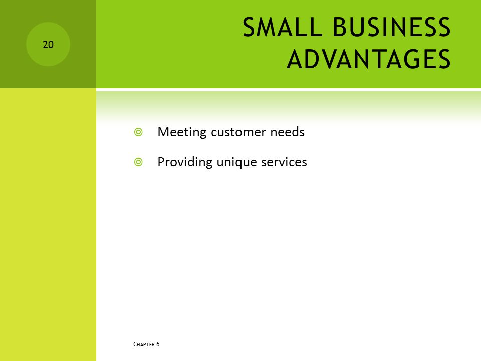 SMALL BUSINESS ADVANTAGES  Meeting customer needs  Providing unique services C HAPTER 6 20