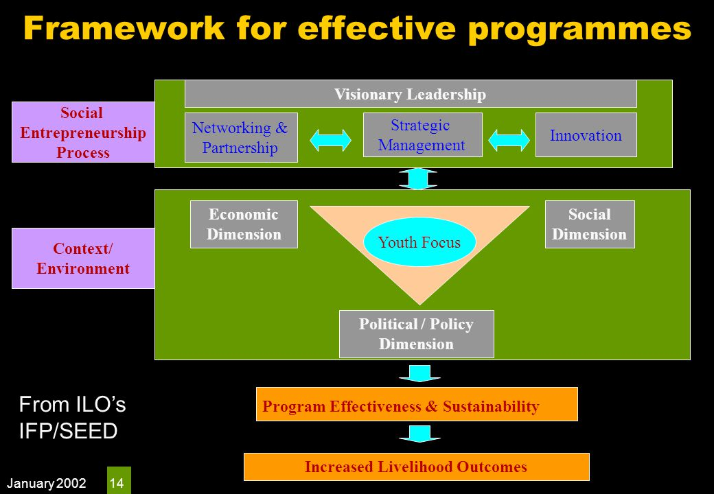 January 2002 14 Youth Focus Visionary Leadership Networking & Partnership Strategic Management Innovation Economic Dimension Social Dimension Political / Policy Dimension Social Entrepreneurship Process Program Effectiveness & Sustainability Context/ Environment Increased Livelihood Outcomes Framework for effective programmes From ILO's IFP/SEED