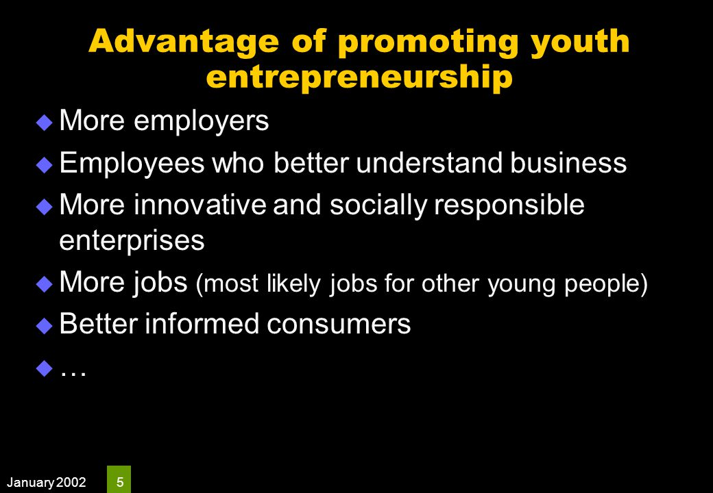 January 2002 16 Developing a youth entrepreneurship strategy  Recommendation No 7 of the high-level panel provides some insights into the broad components of a youth entrepreneurship strategy.