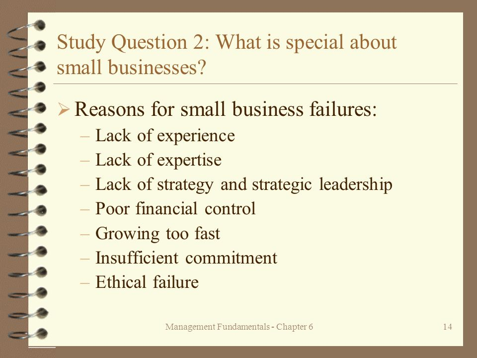 Management Fundamentals - Chapter 614 Study Question 2: What is special about small businesses.