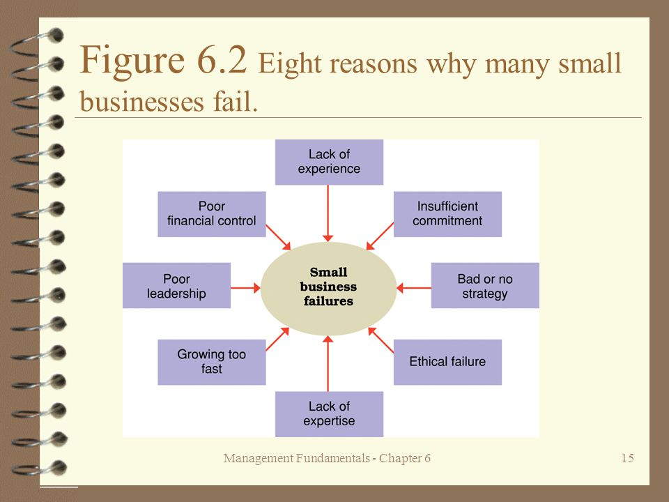 Management Fundamentals - Chapter 615 Figure 6.2 Eight reasons why many small businesses fail.