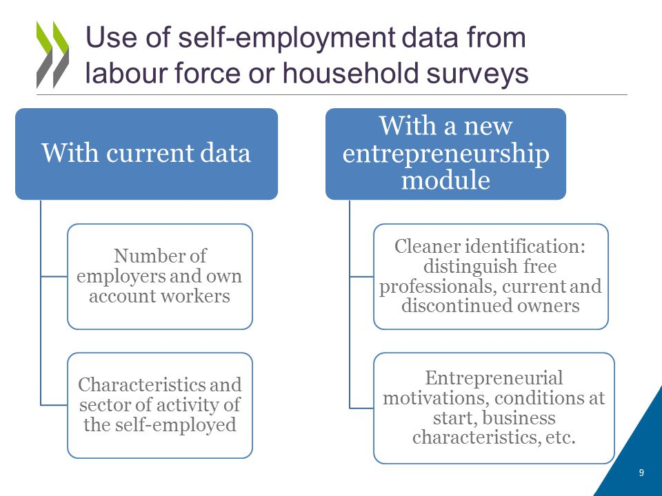 With current data Number of employers and own account workers Characteristics and sector of activity of the self-employed With a new entrepreneurship module Cleaner identification: distinguish free professionals, current and discontinued owners Entrepreneurial motivations, conditions at start, business characteristics, etc.