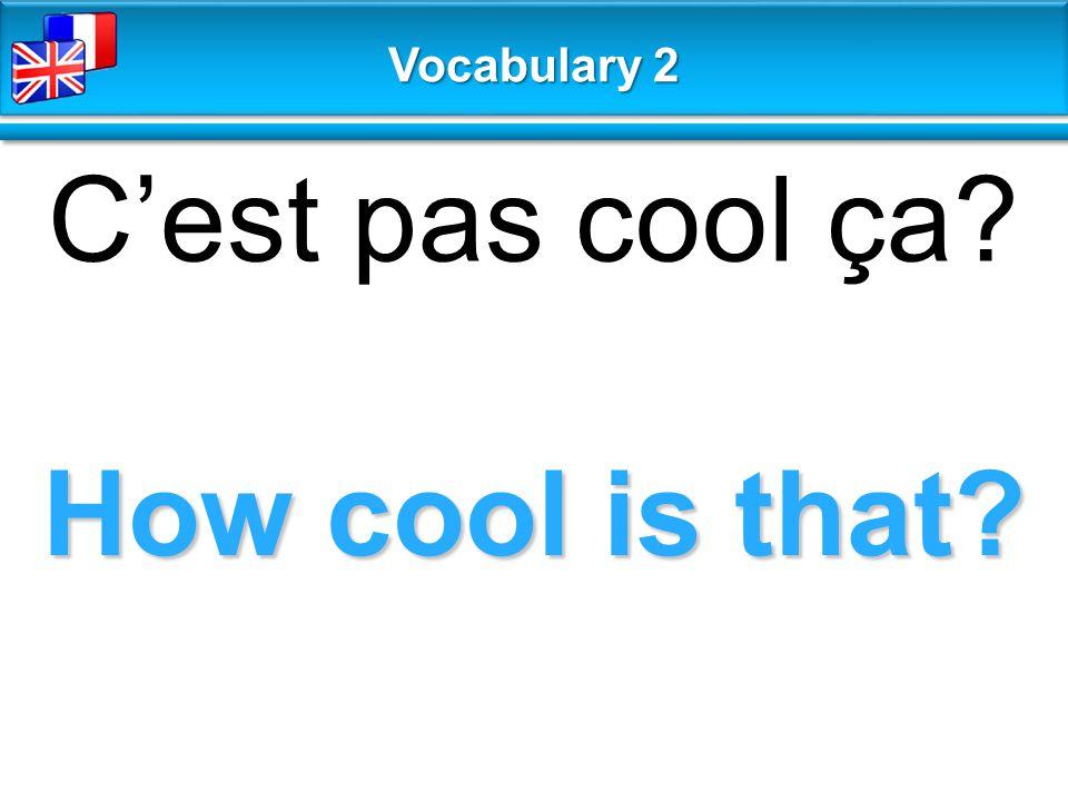 How cool is that? C'est pas cool ça? Vocabulary 2