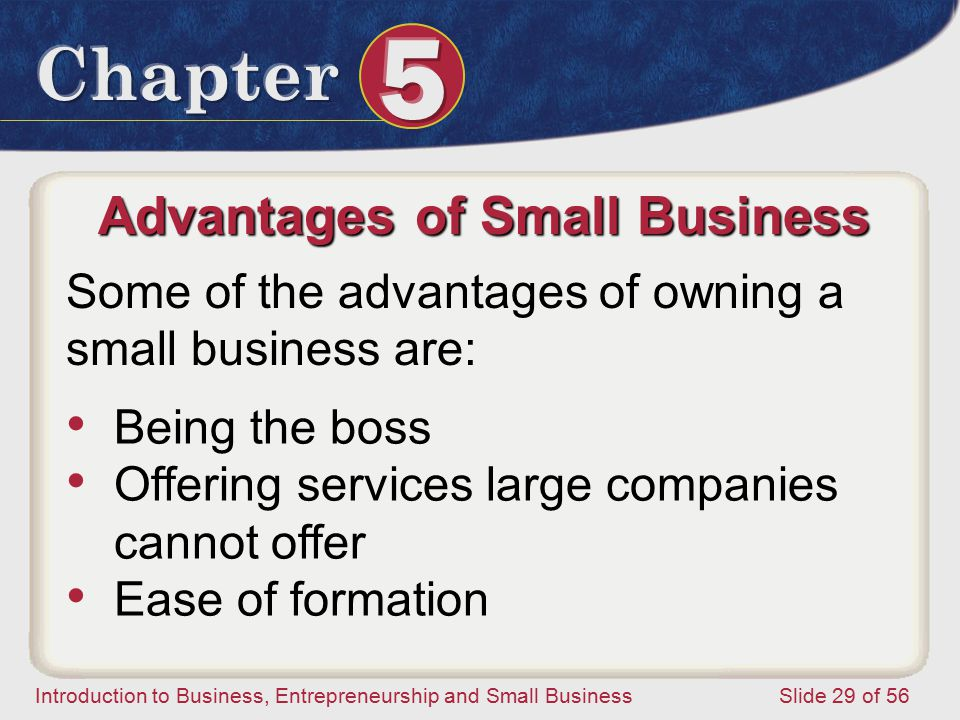 Introduction to Business, Entrepreneurship and Small Business Slide 29 of 56 Advantages of Small Business Some of the advantages of owning a small business are: Being the boss Offering services large companies cannot offer Ease of formation