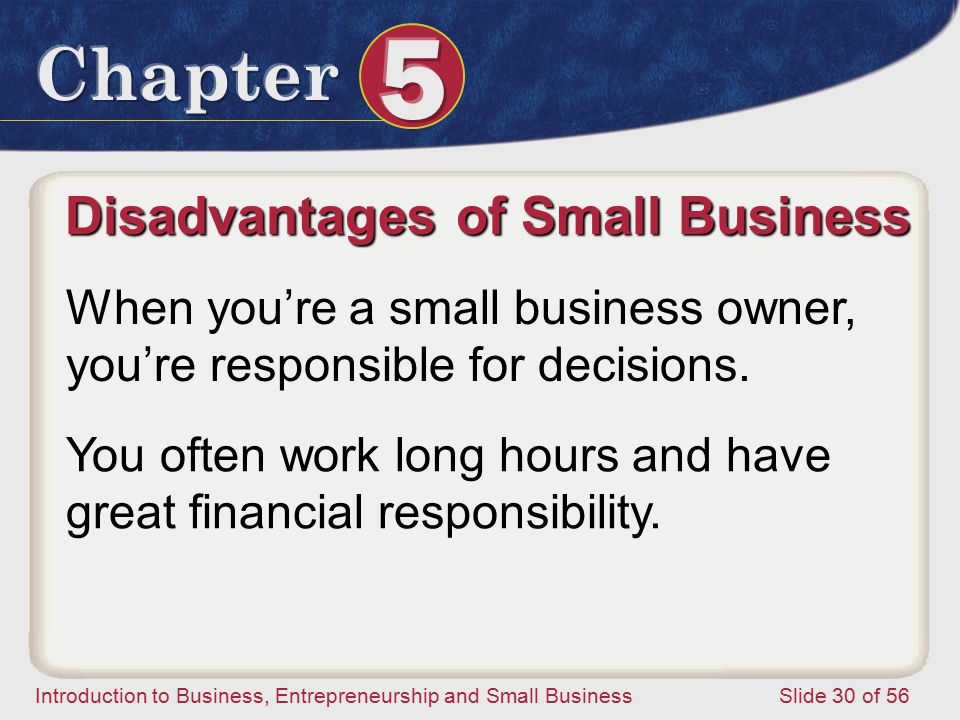 Introduction to Business, Entrepreneurship and Small Business Slide 30 of 56 Disadvantages of Small Business When you're a small business owner, you're responsible for decisions.