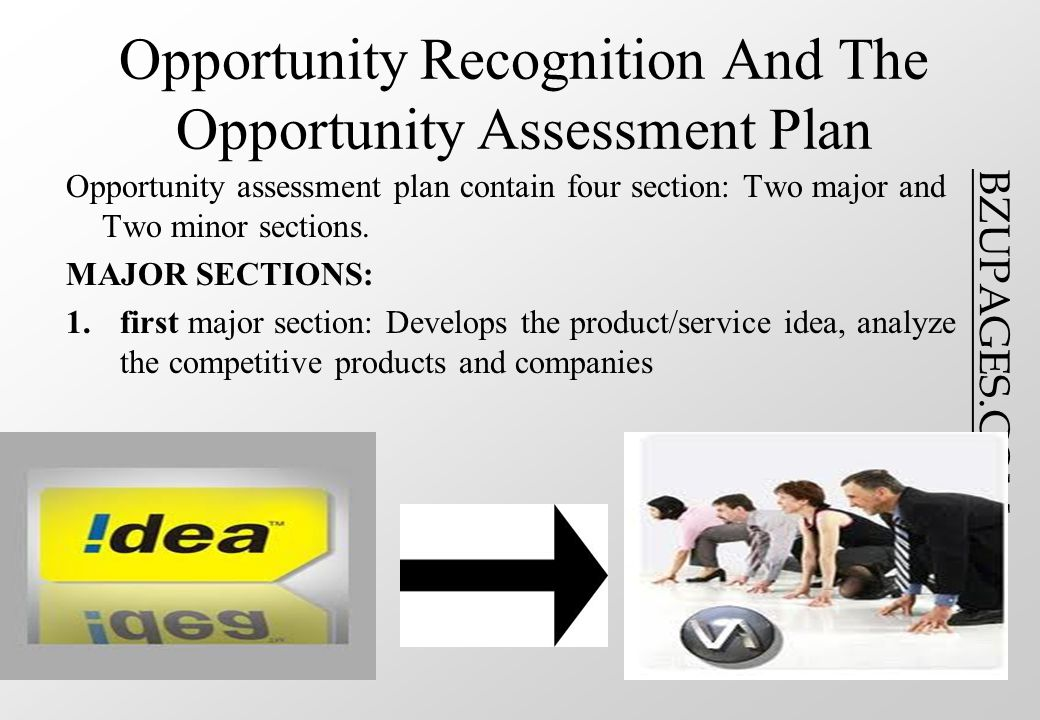 BZUPAGES.COM Opportunity Recognition And The Opportunity Assessment Plan Opportunity assessment plan contain four section: Two major and Two minor sections.