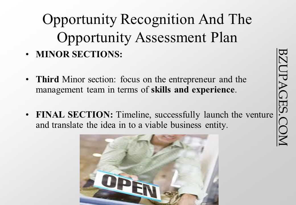 BZUPAGES.COM Opportunity Recognition And The Opportunity Assessment Plan MINOR SECTIONS: Third Minor section: focus on the entrepreneur and the management team in terms of skills and experience.