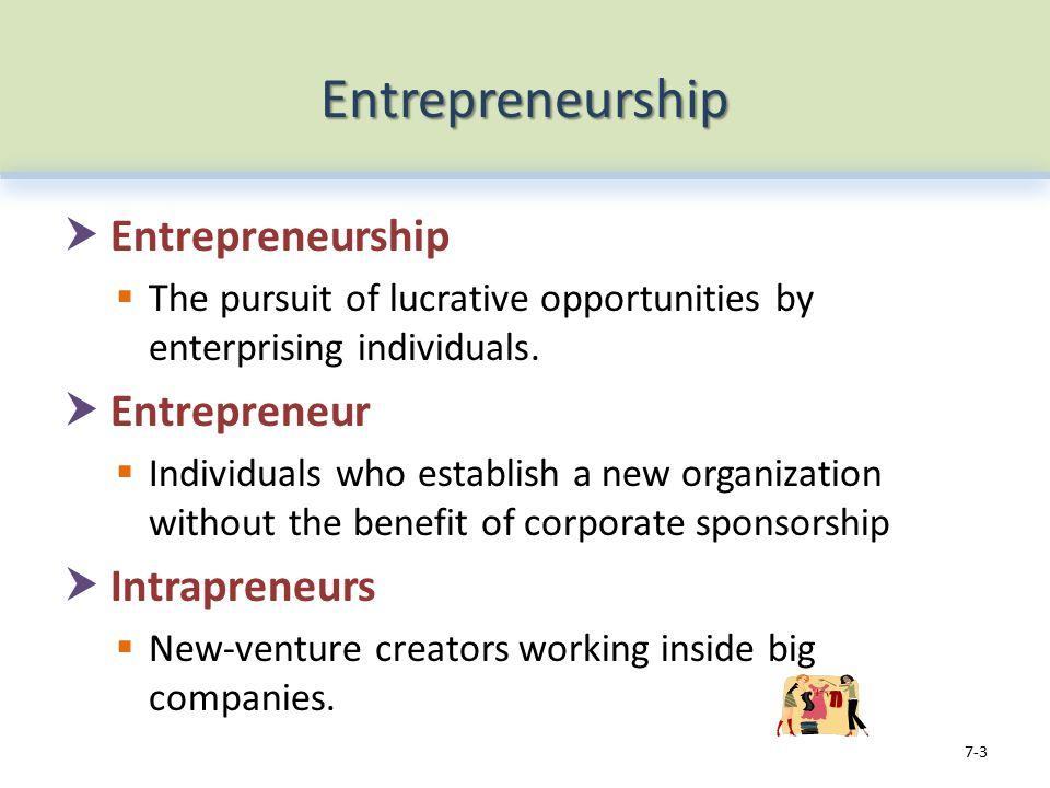 Entrepreneurship  Entrepreneurship  The pursuit of lucrative opportunities by enterprising individuals.
