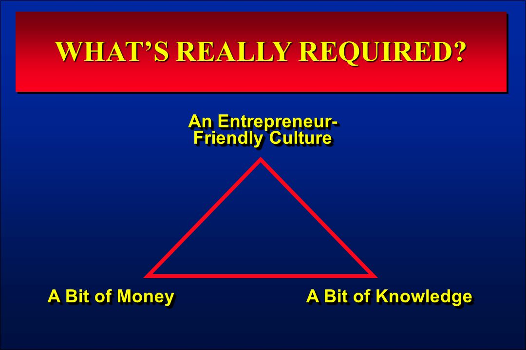 WHAT'S REALLY REQUIRED An Entrepreneur- Friendly Culture A Bit of Money A Bit of Knowledge
