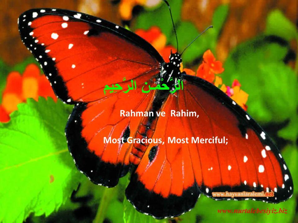 Rahman ve Rahim, Most Gracious, Most Merciful; www.nurtalebesiyiz.biz الرَّحْمـنِ الرَّحِيمِ