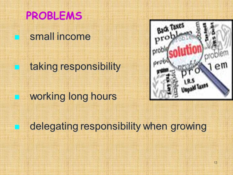 PROBLEMS small income small income taking responsibility taking responsibility working long hours working long hours delegating responsibility when growing delegating responsibility when growing 13