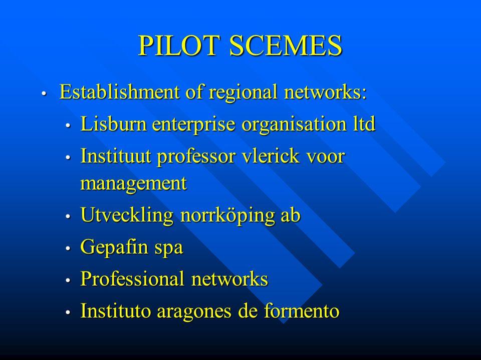 PILOT SCEMES Establishment of regional networks: Establishment of regional networks: Lisburn enterprise organisation ltd Lisburn enterprise organisati