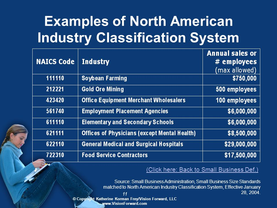 11 © Copyright Katherine Korman Frey/Vision Forward, LLC www.VisionForward.com Examples of North American Industry Classification System Source: Small Business Administration, Small Business Size Standards matched to North American Industry Classification System, Effective January 28, 2004.