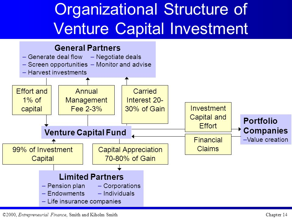 ©2000, Entrepreneurial Finance, Smith and Kiholm Smith Chapter 14 Organizational Structure of Venture Capital Investment Portfolio Companies –Value cr