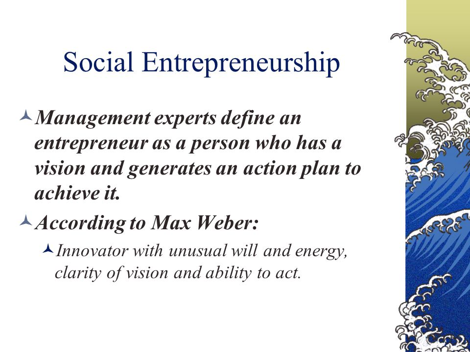 Social Entrepreneurship Management experts define an entrepreneur as a person who has a vision and generates an action plan to achieve it.