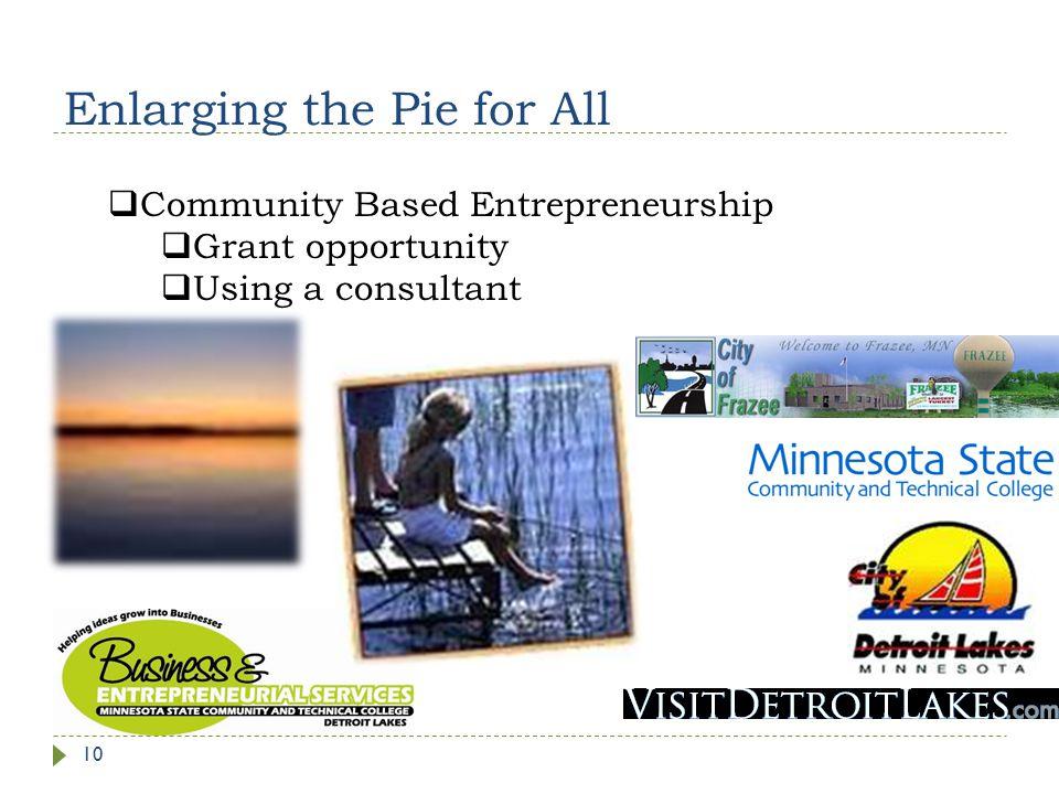Enlarging the Pie for All 10  Community Based Entrepreneurship  Grant opportunity  Using a consultant