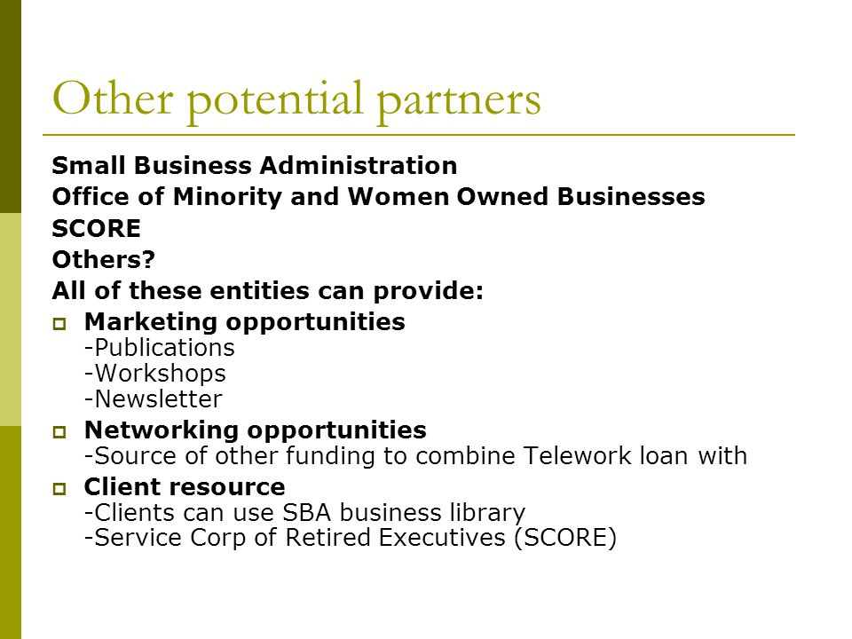 Other potential partners Small Business Administration Office of Minority and Women Owned Businesses SCORE Others.